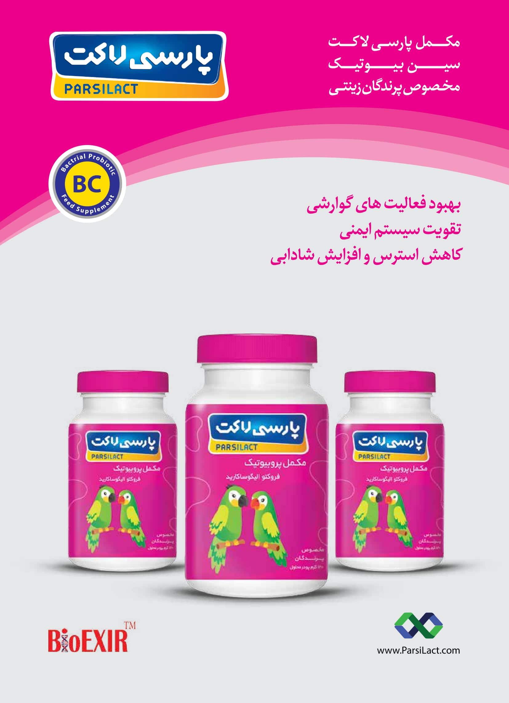 پارسی لاکت مخصوص پرندگان خانگی و زینتی-1